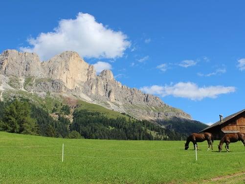 Darum ist die Herbstzeit in den Dolomiten einfach wundervoll!