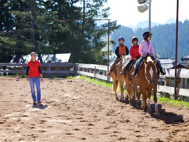 Equestrian farm