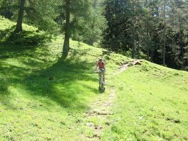 Bike-Wochenprogramm der Moseralm