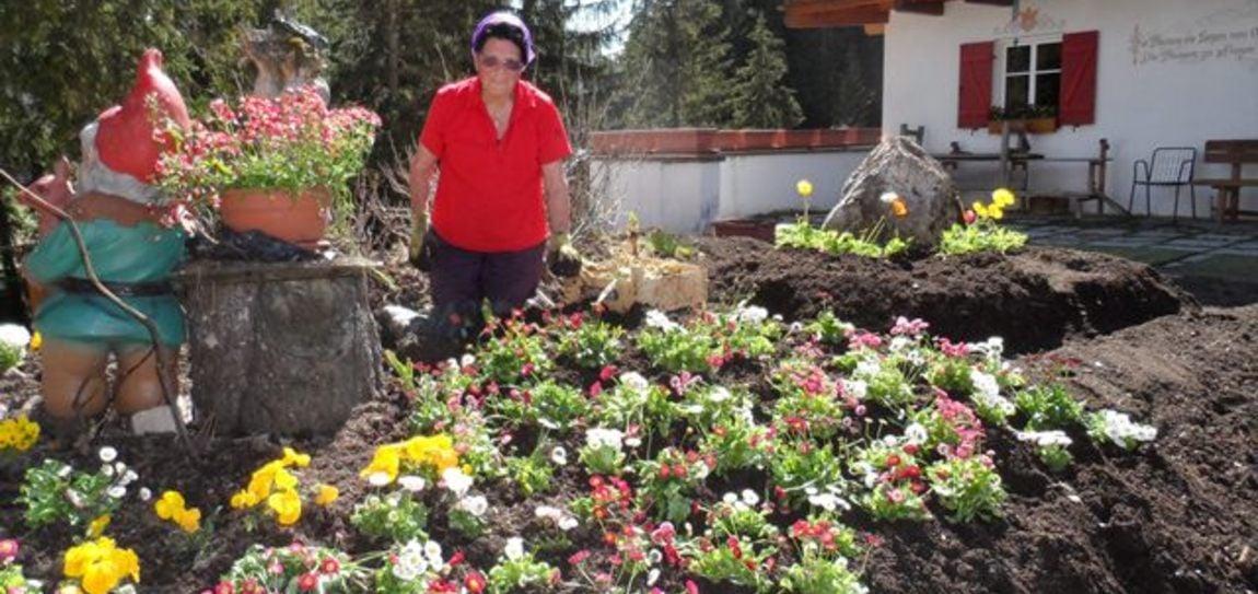 Filomena's Blumenpracht
