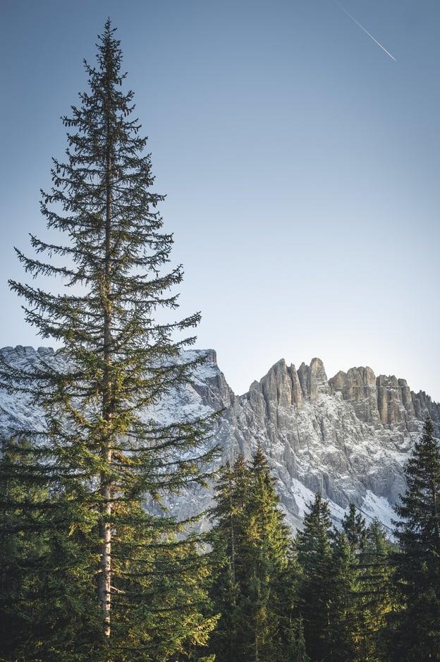 Le montagne pallide