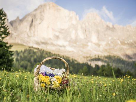 Benessere alpino dall'erbario Moseralm